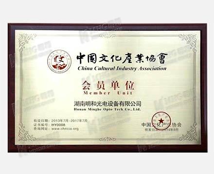 عضو اتحاد الصناعة الثقافية الصينية